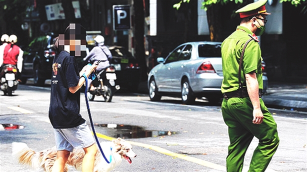 Cô gái nói gì vụ dắt chó đi dạo ngày giãn cách?