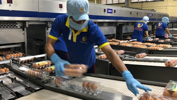 Doanh nghiệp hai lần từ chối đề nghị nâng giá trứng