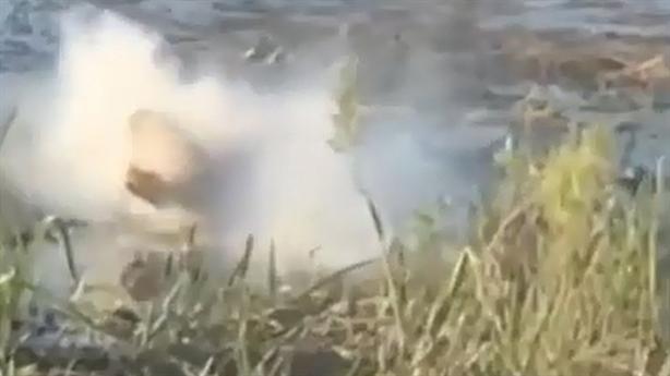 Khoảnh khắc cá sấu nhai gọn chiếc drone rình rập