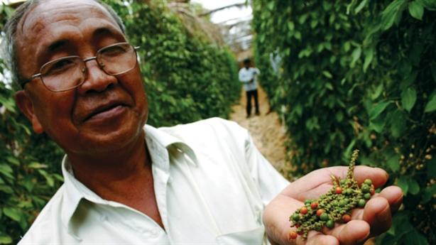 Việt Nam nhập khẩu nông sản lớn từ Campuchia