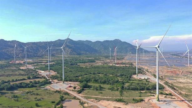 Xin chuyển rừng tự nhiên làm điện gió: Không nên đánh đổi!