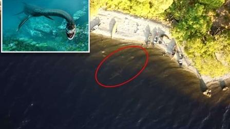 Video nghi quay được quái vật hồ Loch Ness gây xôn xao