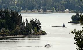 Mặc dù vậy, vị lãnh đạo này không tiết lộ thêm chi tiết nào về vật thể USS Connecticut đã va phải.