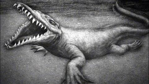 Thực hư quái vật đáng sợ trong hồ nước ở Mỹ