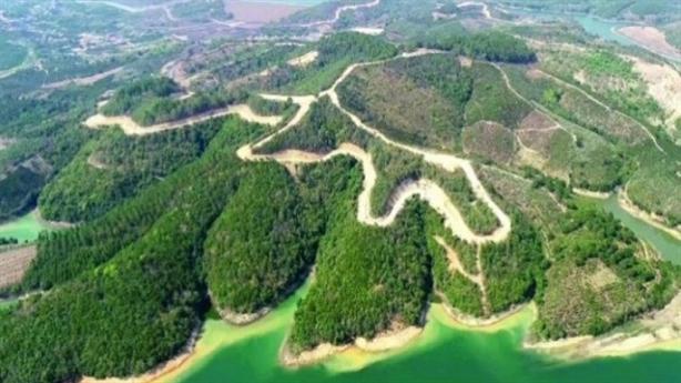 Sài Gòn-Đại Ninh bồi thường bao nhiêu khi để mất 257ha rừng?